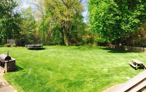 Awesome back yard at Hillandale House